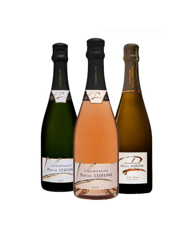 Coffret dégustation champagne pascal lejeune