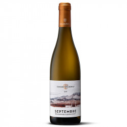Septembre - Chardonnay 2018 Edouard Delaunay