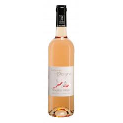 Beaujolais-Villages Rosé 2020 DOMAINE DE LA PLAIGNE