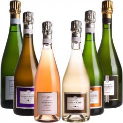 DECOUVERTE Champagne Damien-Buffet