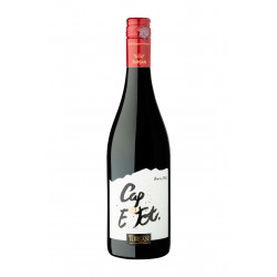 CAP E Tot rouge Assemblage La Cave des Vignerons de Tursan