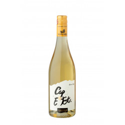 CAP E Tot Blanc doux 2020 La Cave des Vignerons de Tursan