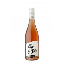 CAP E Tot rosé 2020 La Cave des Vignerons de Tursan