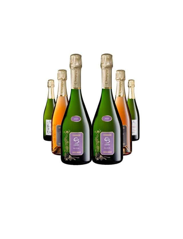 Brut party 6 bouteilles champagne christian briard